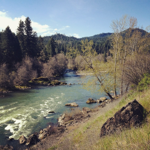 Creek along Oregon Route 62 (Instagram: @blueskyandhardrock)