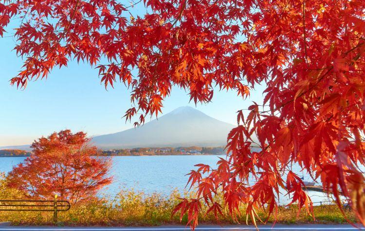 Japan.1